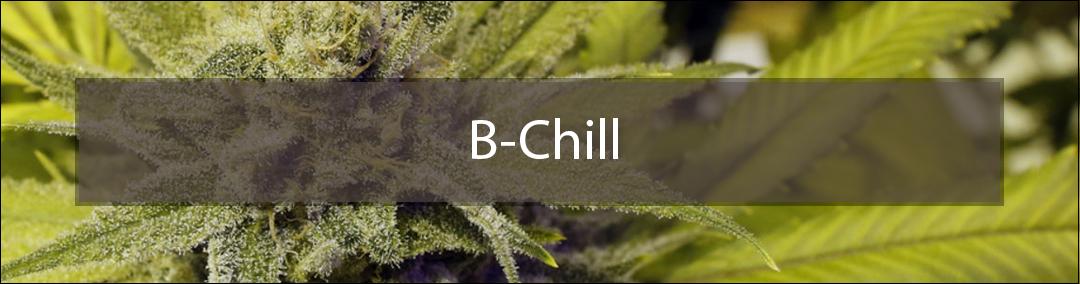 B-Chill